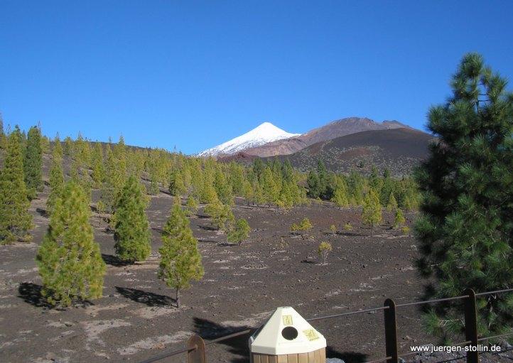 Im Hintergrund der PICO DEL TEIDE ( 3718 Meter) mit einer Schneehaube.